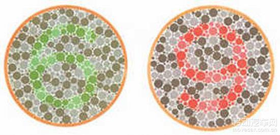 学车指南:2016年考驾照色盲色弱测试图3