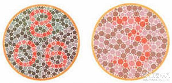 学车指南:2016年考驾照色盲色弱测试图4
